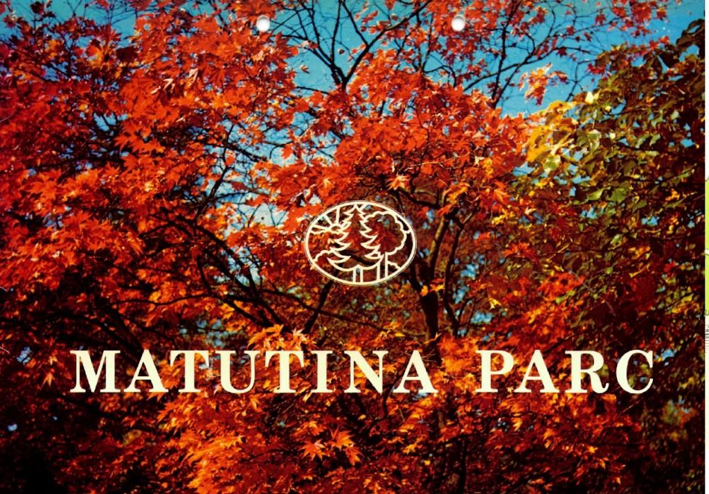 Matutina1